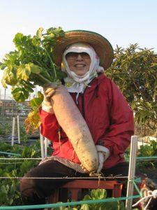 有機農産物の価格